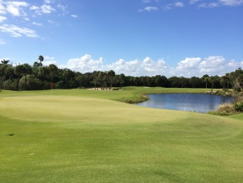 11 green playability with grasses beautiful