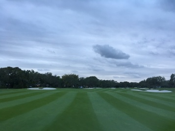 14th-fairway-dec16