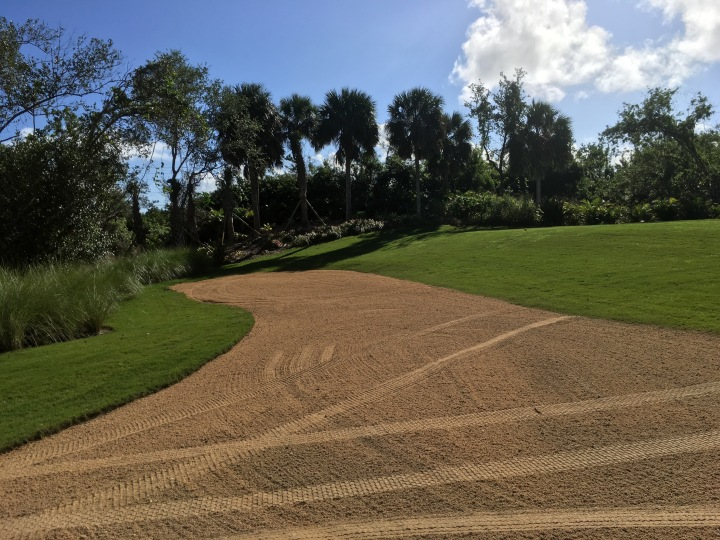 8 Black Tee cart path expansion