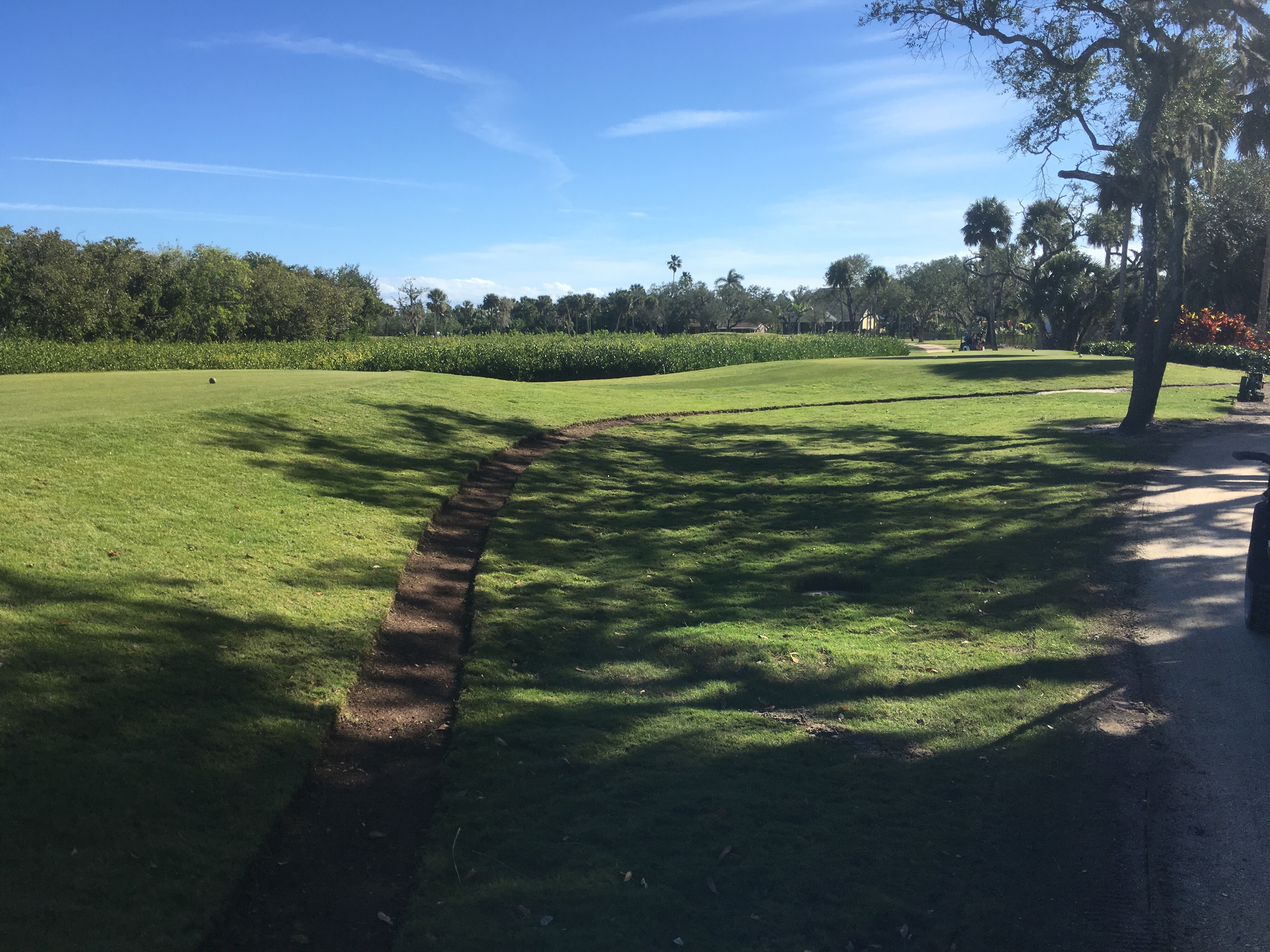 11 Tee rough to be raised and coquina added